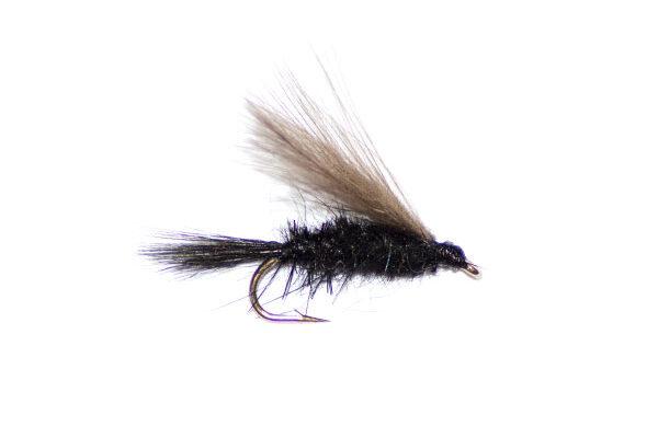Black gnat CDC