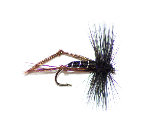 Black Hackle Hopper