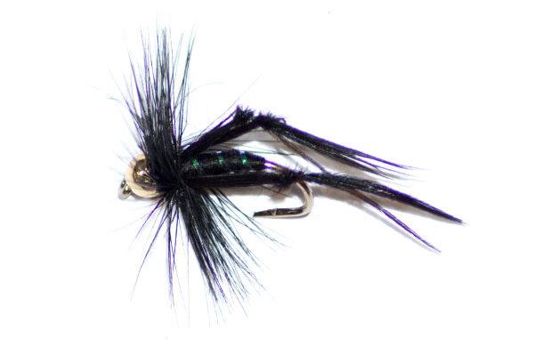 Black Hopper Goldhead