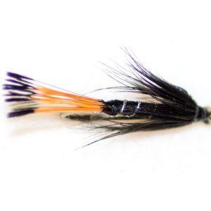 Black pennel