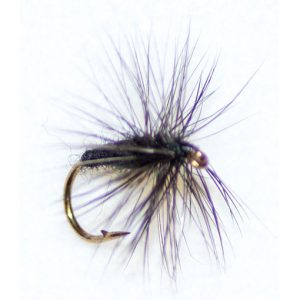 Black Spider Hackle