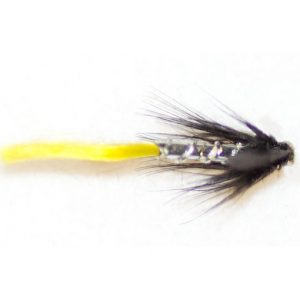 Blae & Silver yellow tail