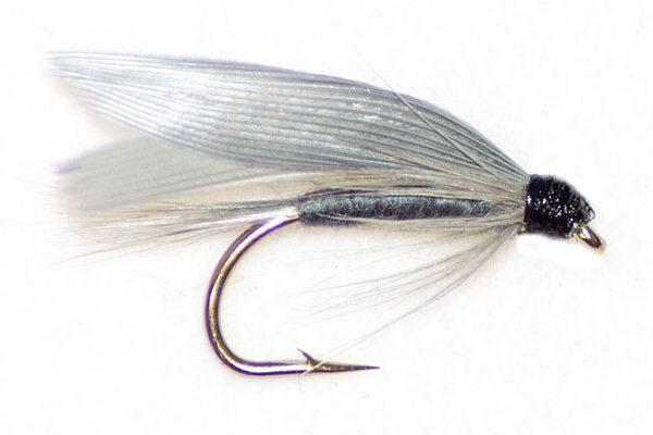 Blue Dun Winged