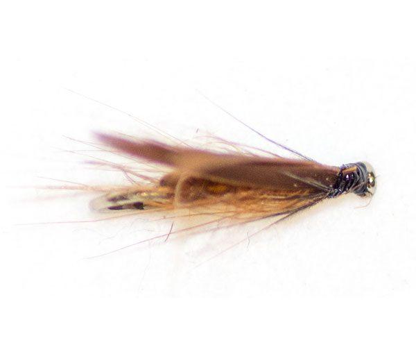 Brown Sedge