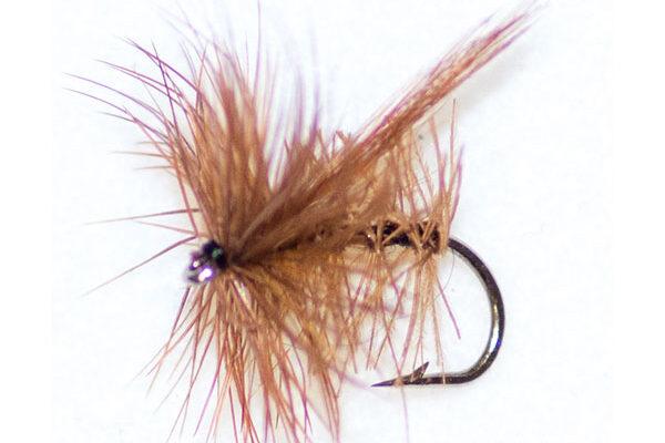 Brown Sedge Winged