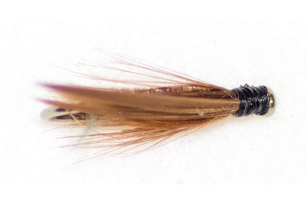 Cinnamon Sedge