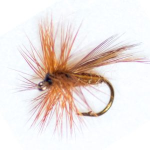 Cinnamon Sedge Winged