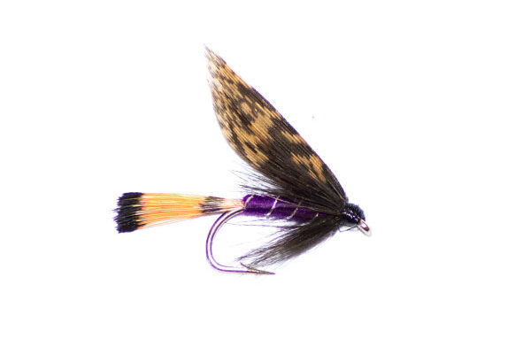 Purple & grouse