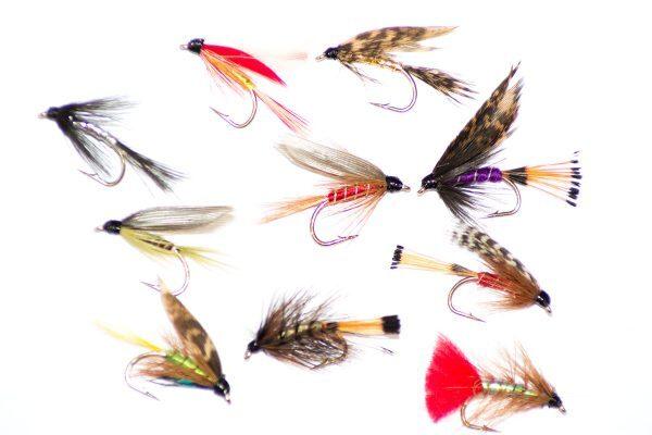 Mixed Fly Packs