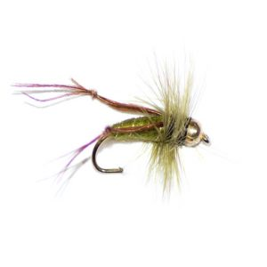 Olive Hopper Goldhead