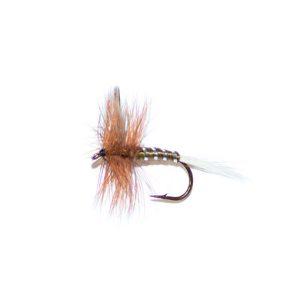 Olive Spinner