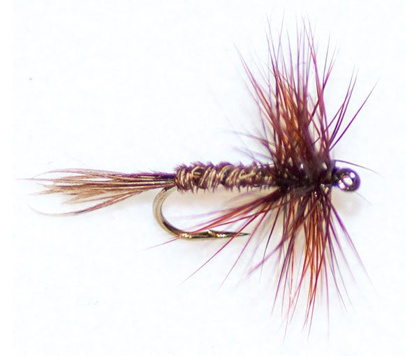 Pheasant Tail 12 Pack Mixed Size 12//14//16 Fishing Flies Dry Trout Flies