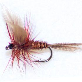 Pheasant Tail Brown Winged 2