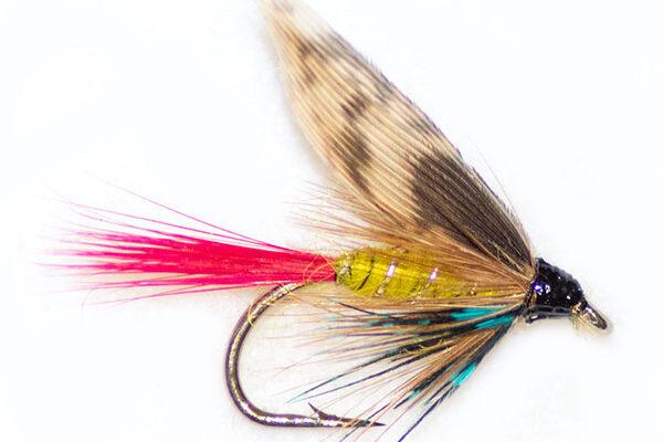 Red Tail Invicta