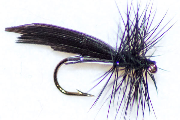 Silver Sedge Winged