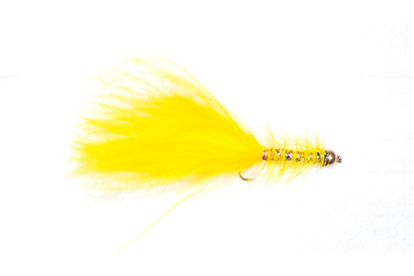 Yellow Dancer Goldhead