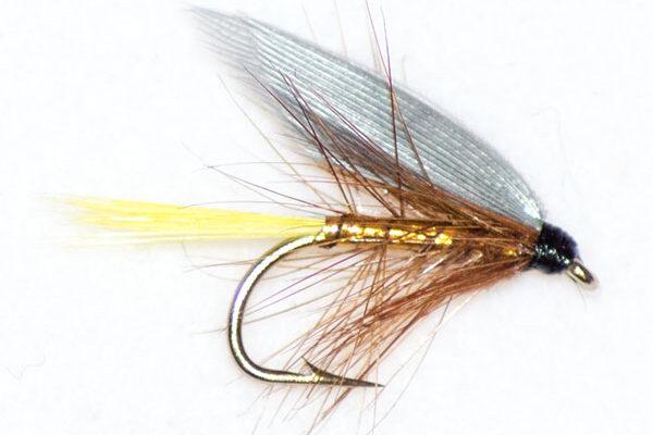 Yellow Tail Wickhams