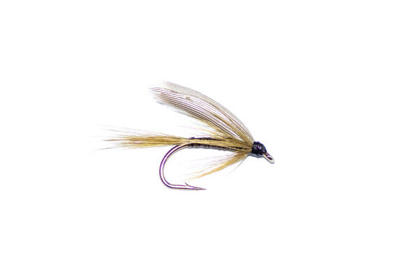 Olive quill