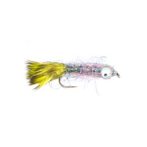 Minnow Fry Light Bright Rainbow