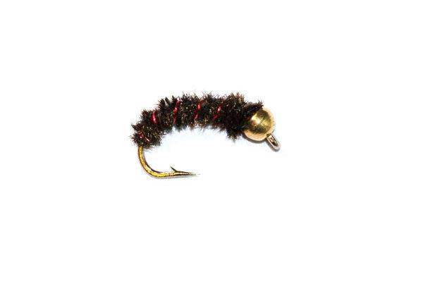 Glister Bug Black