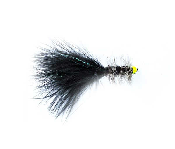 Grizzly Black Hothead Tadpole