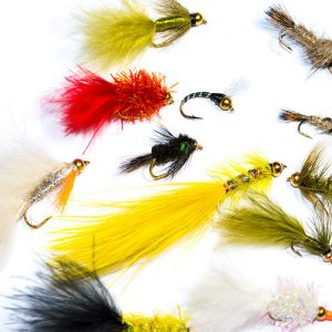 Goldhead Mixed Fly Pack