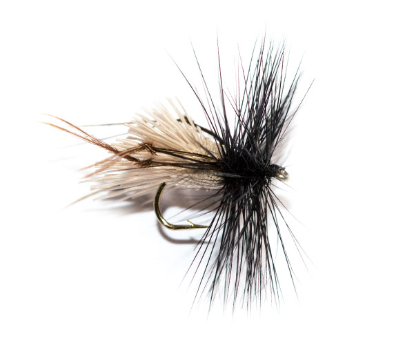 Coachman Brown Hackle