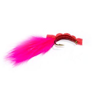 Pink Floating Bloodworm