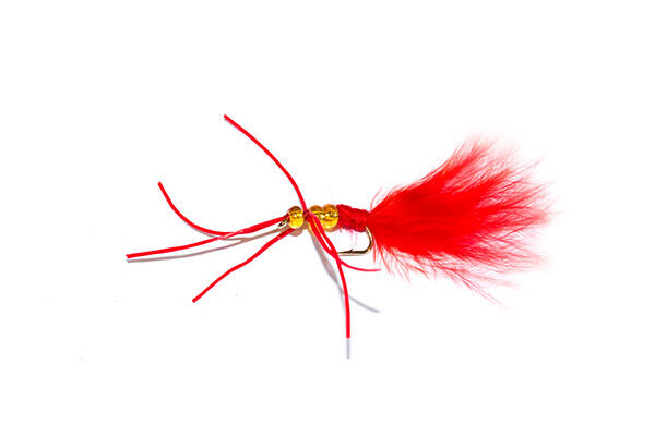 Amber Bead Red Critter Blood Worm