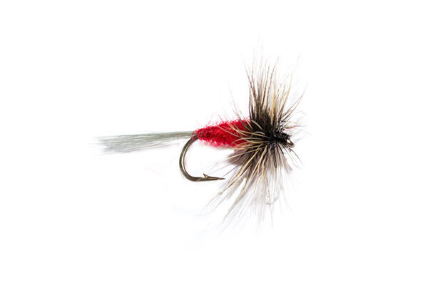 Special Dry Flies