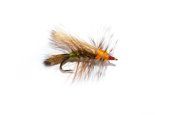 Olive and Orange Stimulator Dry Fly