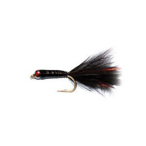 Red Eye Stalking Bug Black