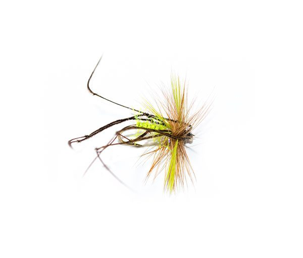 UV Straggle Body Lime Wings Daddy