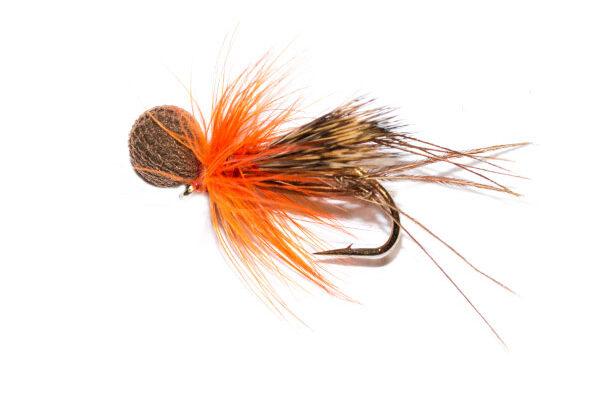 Half Hog Hopper Dunkeld Brown Booby