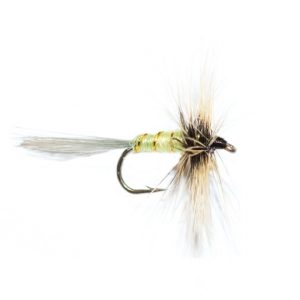 Grey Hen Greenwells dry fly