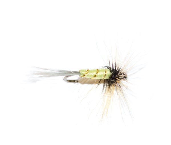 Grey Hen Greenwells dry fly