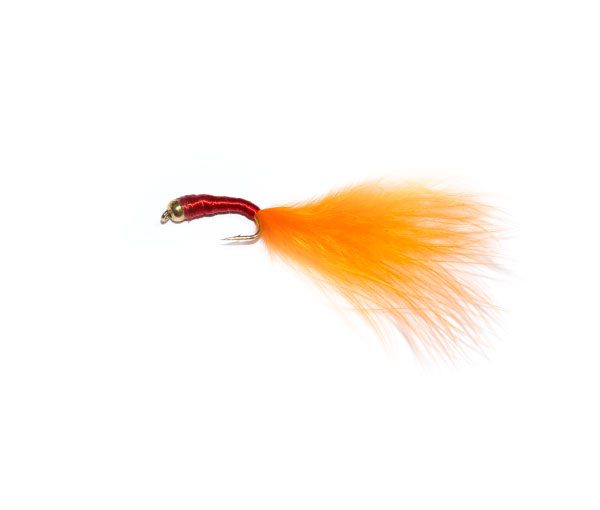 Red and Orange Bloodworm