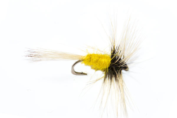 Thorax Pale Morning Dun dry fly