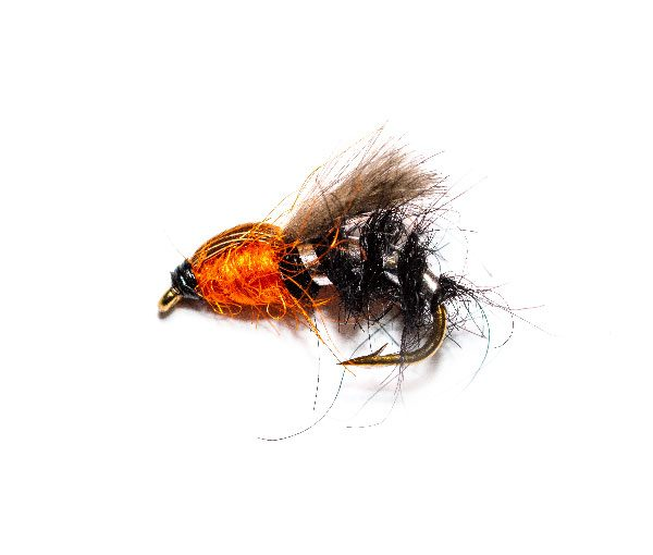 Hatching Duck Fly