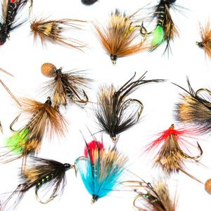 Hopper Half Hog & Booby Hopper Mixed Fly Pack