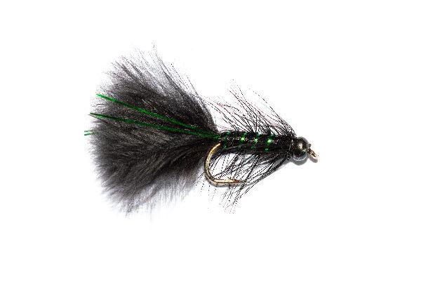 Black Head Black and Green Flash Damsel