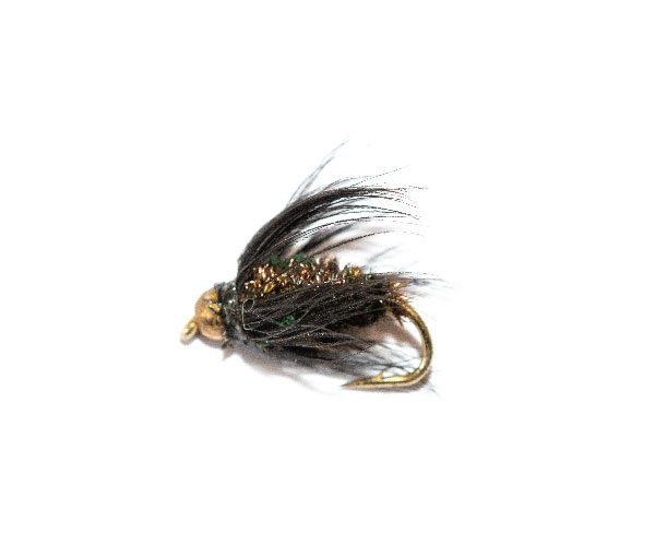 Black & Peacock Wet Fly Goldhead