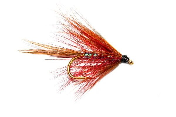 Claret Pearly Dabbler