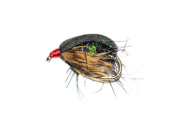 Coch Y Bonddu Beetle Black & Green Hot Spot