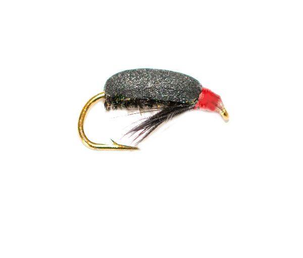 Coch Y Bonddu Beetle Peacock