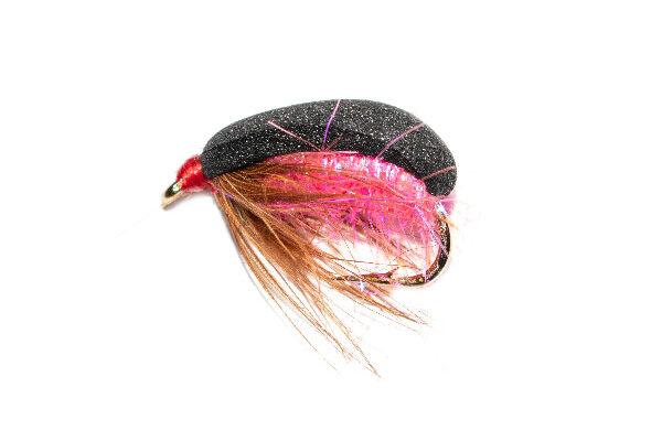 Coch Y Bonddu Beetle Pink Sparkle