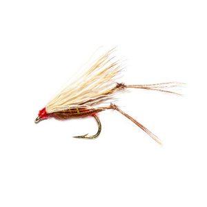 Fiery Brown Harray Hopper