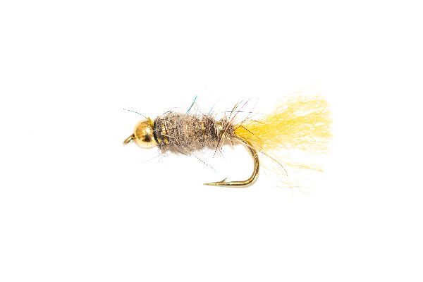 Gold Nugget Allen Fly Nymph