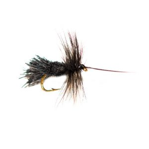 Horned Black Goddard Caddis Black Belly Sedge