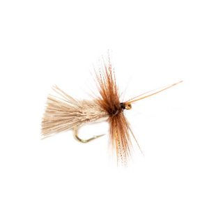 Horned Goddard Caddis White Belly Sedge